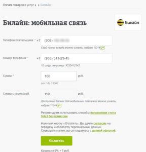 Шаг 4. Вводим данные. Комиссия составит 5% + 5 рублей