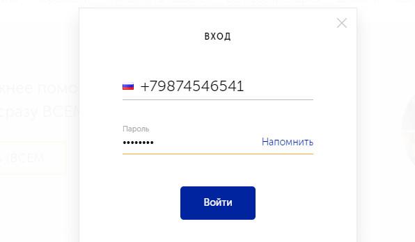 Номер телефона, который вы использовали при создании виртуального кошелька будет являться номером счета, и потребуется при пополнении и совершении перевода
