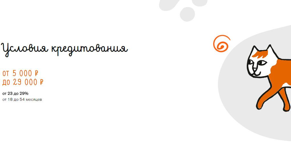 По условиям кредитования заемщик может рассчитывать на максимальную сумму кредитных средств на карте в 29000 рублей