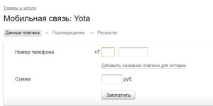Изображение - Как положить деньги на йоту через банковскую карту Zapolnyaem-nuzhnyie-rekvizityi-300x150